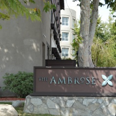 Ambrose Hotel, eco-friendly and elegant, awaits your arrival in Santa Monica