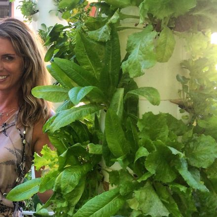 Hydroponic Love on the Gower Studio lot. Food and Bounty.