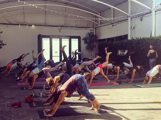 Fig and Olive Core Power Yoga